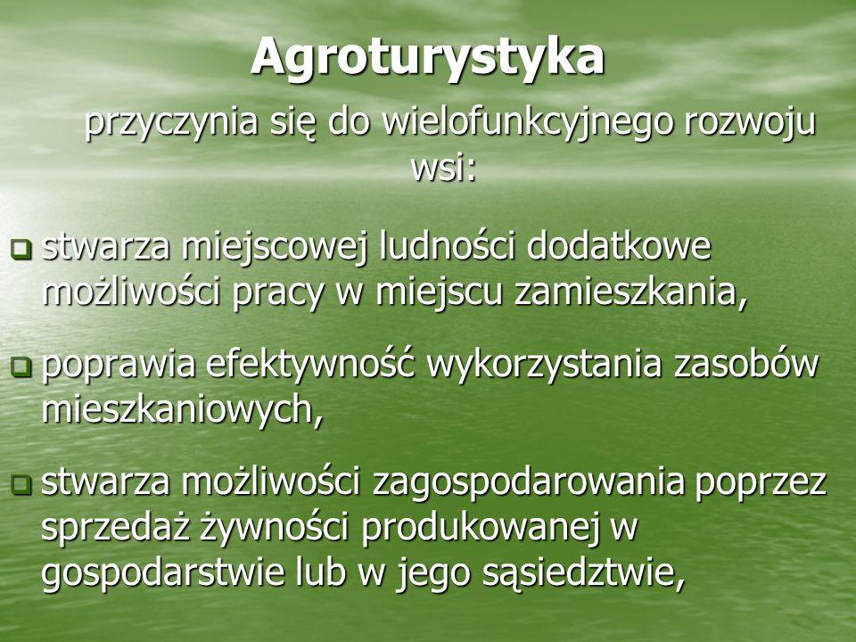 Agroturystyka przyczynia się do wielofunkcyjnego rozwoju wsi: przyczynia się do wielofunkcyjnego rozwoju wsi: stwarza miejscowej ludności dodatkowe mo