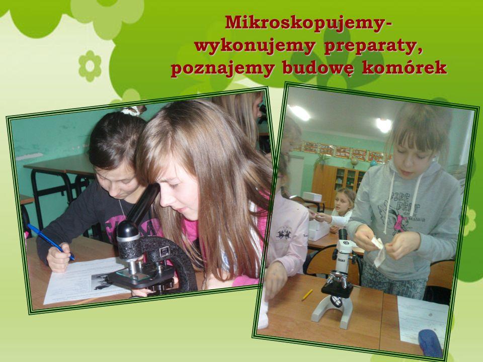 Mikroskopujemy- wykonujemy preparaty, poznajemy budowę komórek