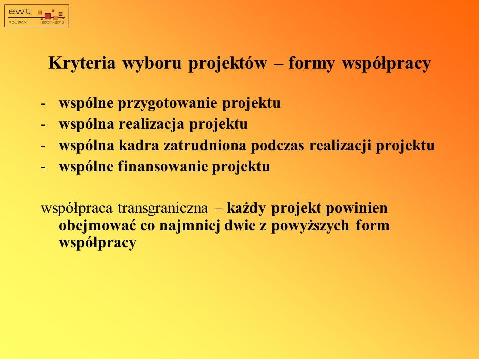 Kryteria wyboru projektów – formy współpracy -wspólne przygotowanie projektu -wspólna realizacja projektu -wspólna kadra zatrudniona podczas realizacj