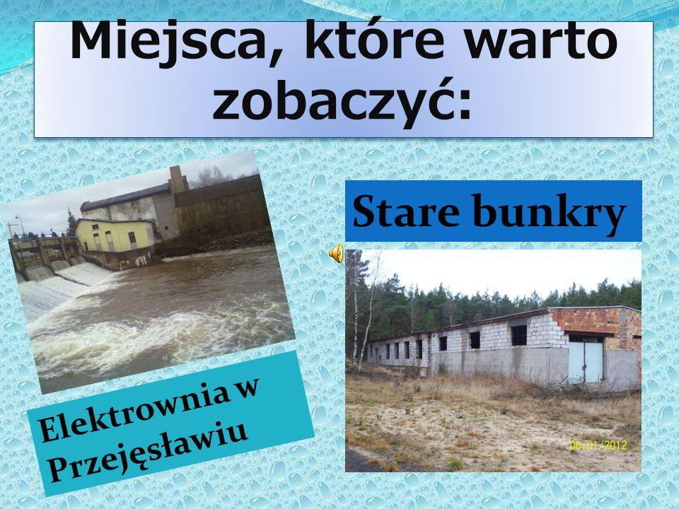 Miejsca, które warto zobaczyć: Miejsca, które warto zobaczyć: E l e k t r o w n i a w P r z e j ę s ł a w i u Stare bunkry