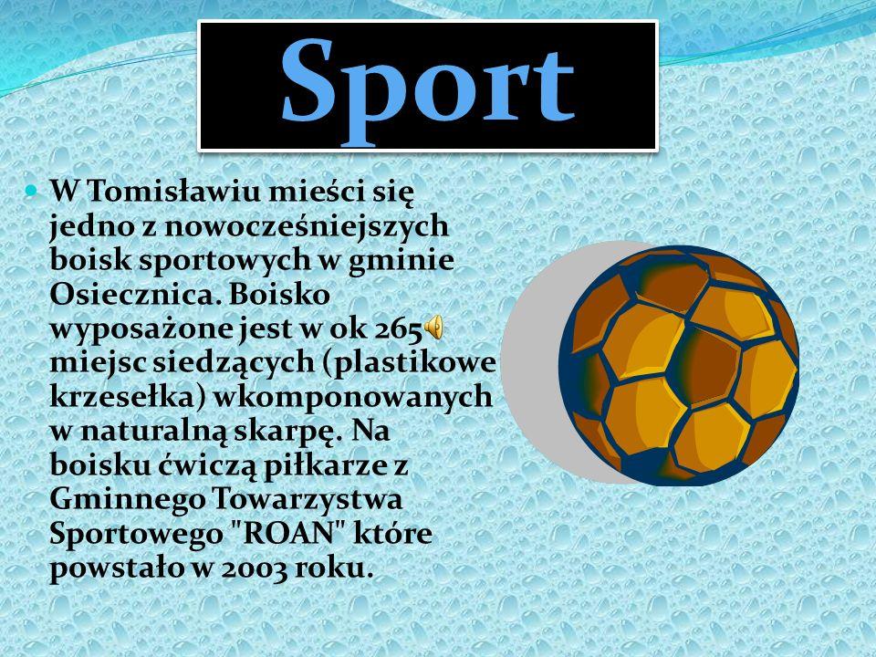 Sport W Tomisławiu mieści się jedno z nowocześniejszych boisk sportowych w gminie Osiecznica. Boisko wyposażone jest w ok 265 miejsc siedzących (plast