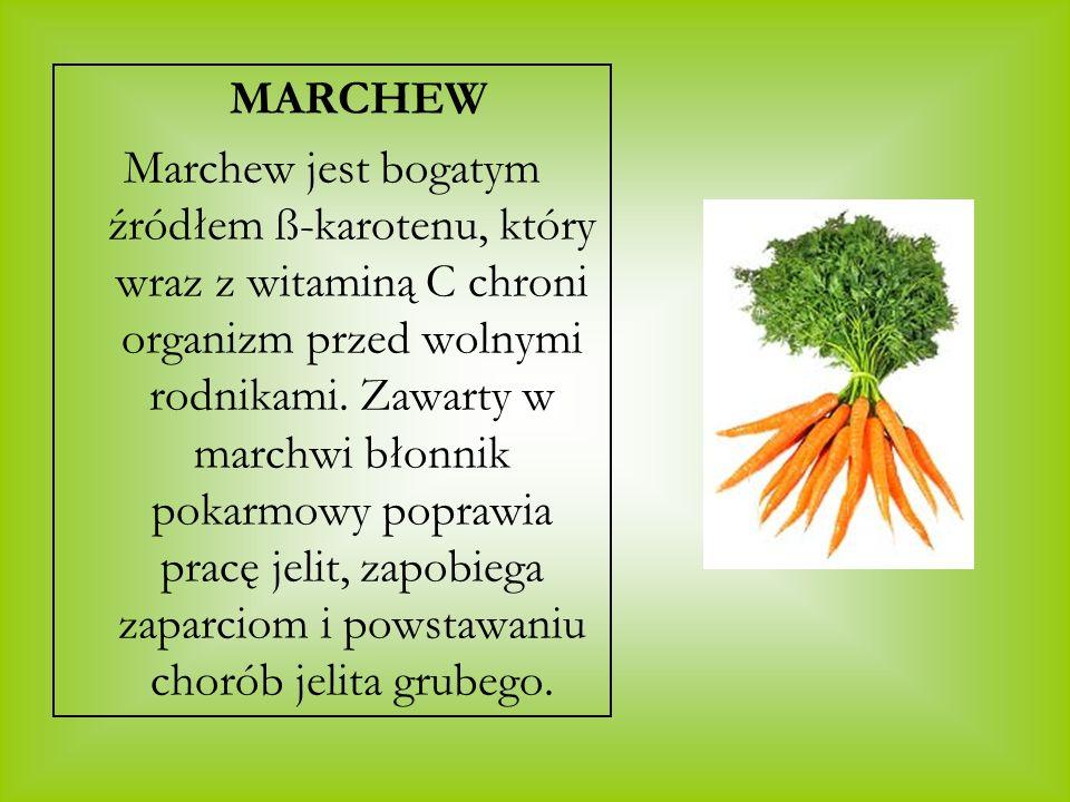 MARCHEW Marchew jest bogatym źródłem ß-karotenu, który wraz z witaminą C chroni organizm przed wolnymi rodnikami. Zawarty w marchwi błonnik pokarmowy