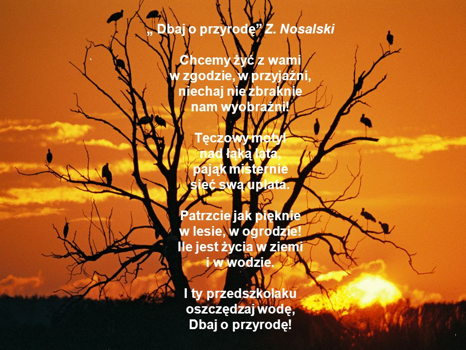 Dbaj o przyrodę Z. Nosalski Chcemy żyć z wami w zgodzie, w przyjaźni, niechaj nie zbraknie nam wyobraźni! Tęczowy motyl nad łąką lata, pająk misternie