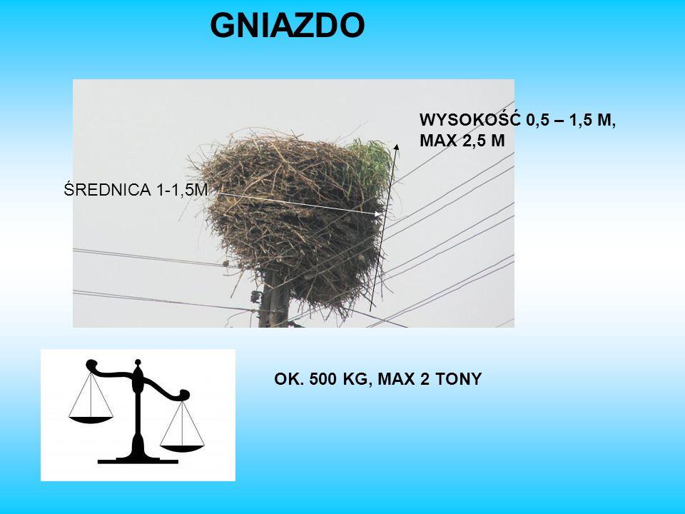 GNIAZDO OK. 500 KG, MAX 2 TONY WYSOKOŚĆ 0,5 – 1,5 M, MAX 2,5 M ŚREDNICA 1-1,5M