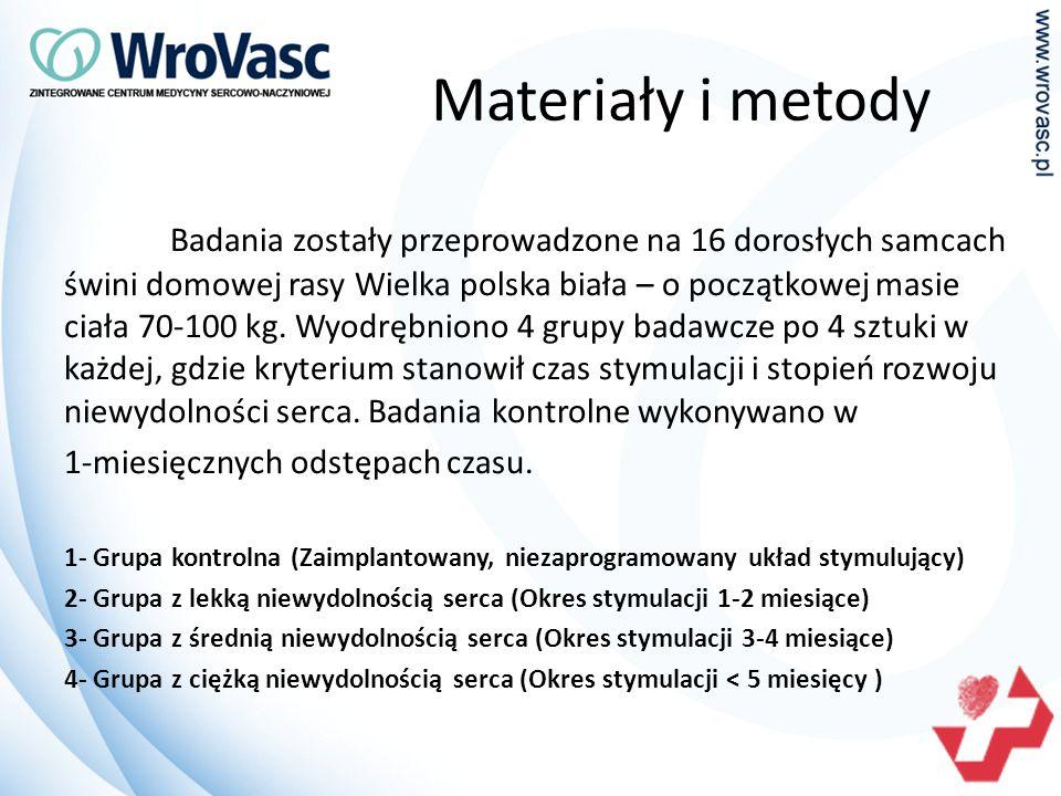 Materiały i metody Badania zostały przeprowadzone na 16 dorosłych samcach świni domowej rasy Wielka polska biała – o początkowej masie ciała 70-100 kg.