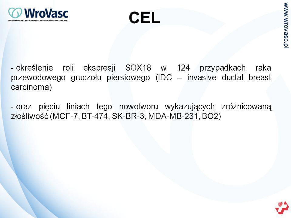 CEL - określenie roli ekspresji SOX18 w 124 przypadkach raka przewodowego gruczołu piersiowego (IDC – invasive ductal breast carcinoma) - oraz pięciu liniach tego nowotworu wykazujących zróżnicowaną złośliwość (MCF-7, BT-474, SK-BR-3, MDA-MB-231, BO2)