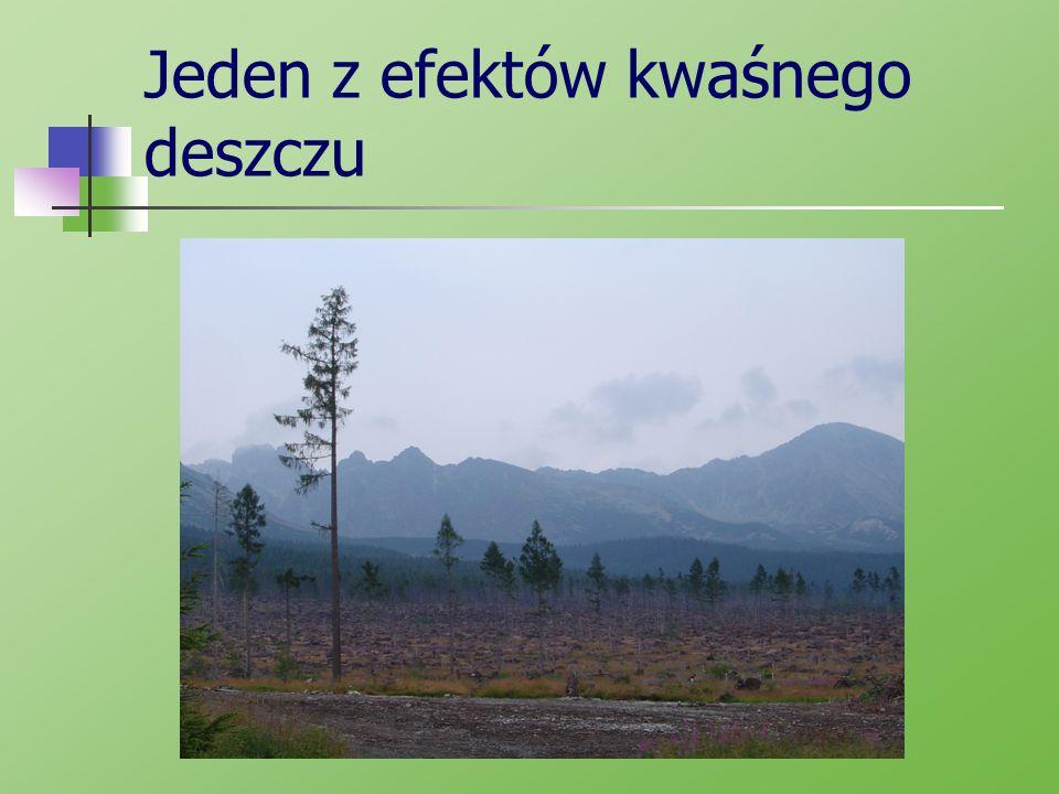 Zagrożenia Kwaśne deszcze powodują m.in.: - obumieranie lasów, - zakwaszenie wód powierzchniowych oraz gleb, opadanie liści drzew, choroba całej rośliny, - liczne choroby ludzi, - choroby zwierząt, - niszczenie budowli.