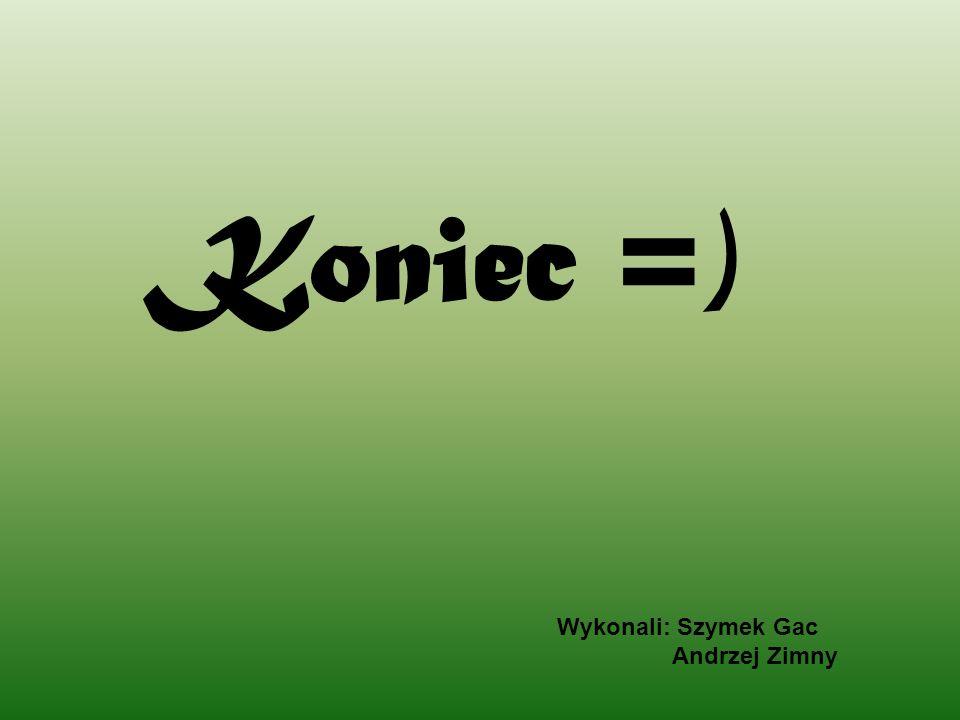 Koniec =) Wykonali: Szymek Gac Andrzej Zimny