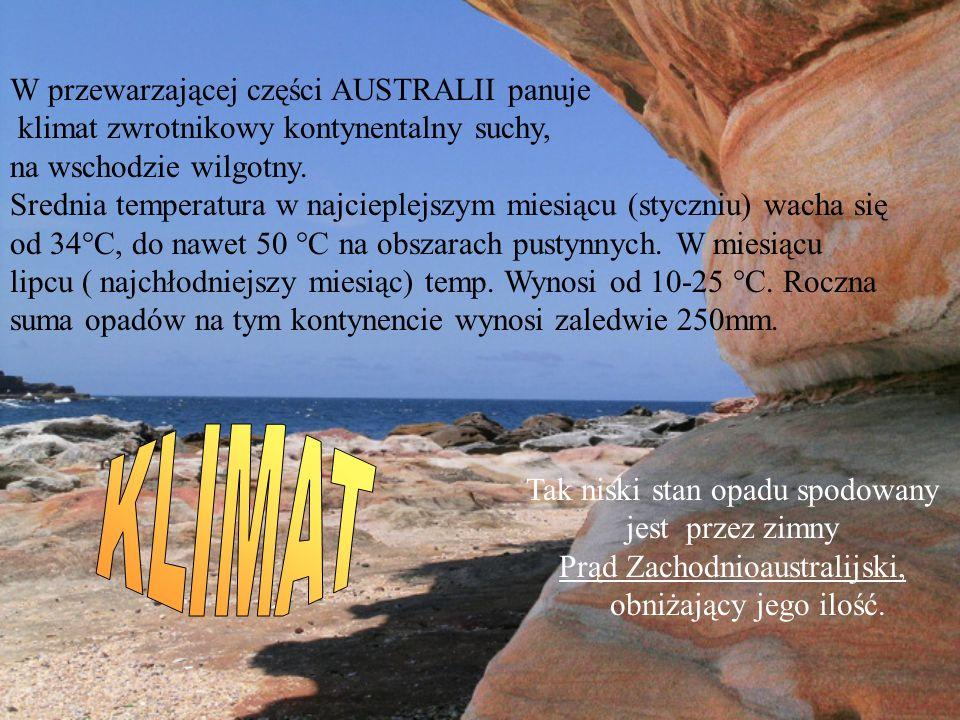 W przewarzającej części AUSTRALII panuje klimat zwrotnikowy kontynentalny suchy, na wschodzie wilgotny. Srednia temperatura w najcieplejszym miesiącu