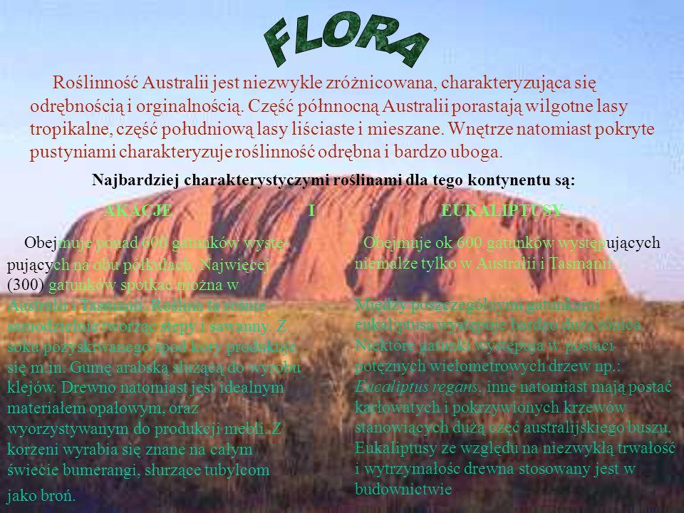 Roślinność Australii jest niezwykle zróżnicowana, charakteryzująca się odrębnością i orginalnością. Część półnnocną Australii porastają wilgotne lasy