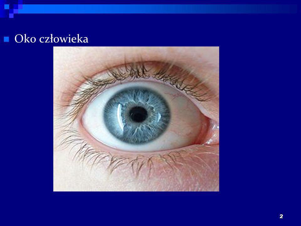 2 Oko człowieka