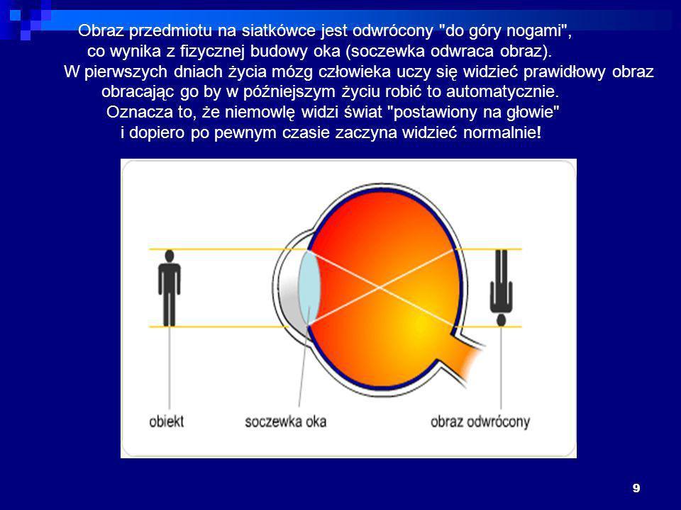 9 Obraz przedmiotu na siatkówce jest odwrócony