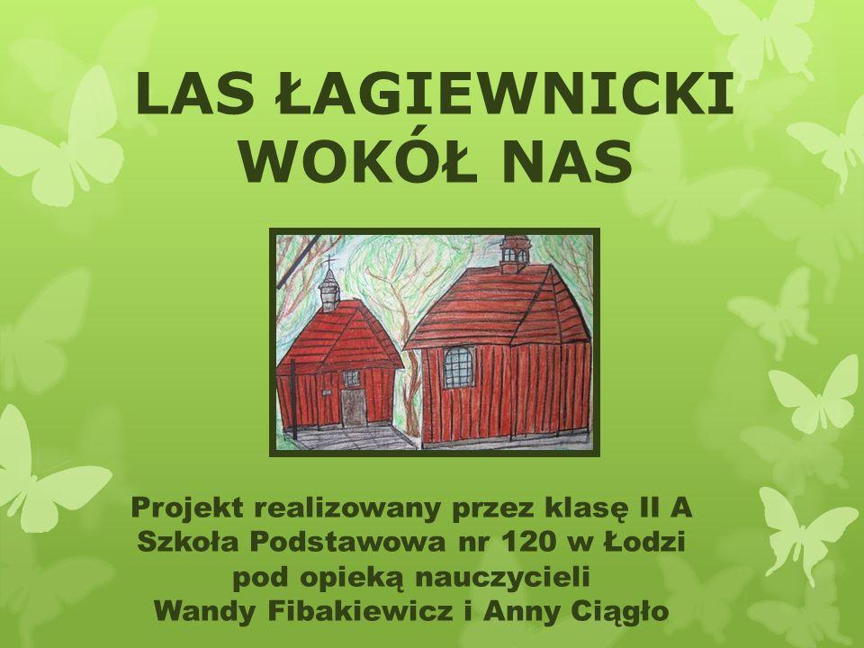 LAS ŁAGIEWNICKI WOKÓŁ NAS Projekt realizowany przez klasę II A Szkoła Podstawowa nr 120 w Łodzi pod opieką nauczycieli Wandy Fibakiewicz i Anny Ciągło