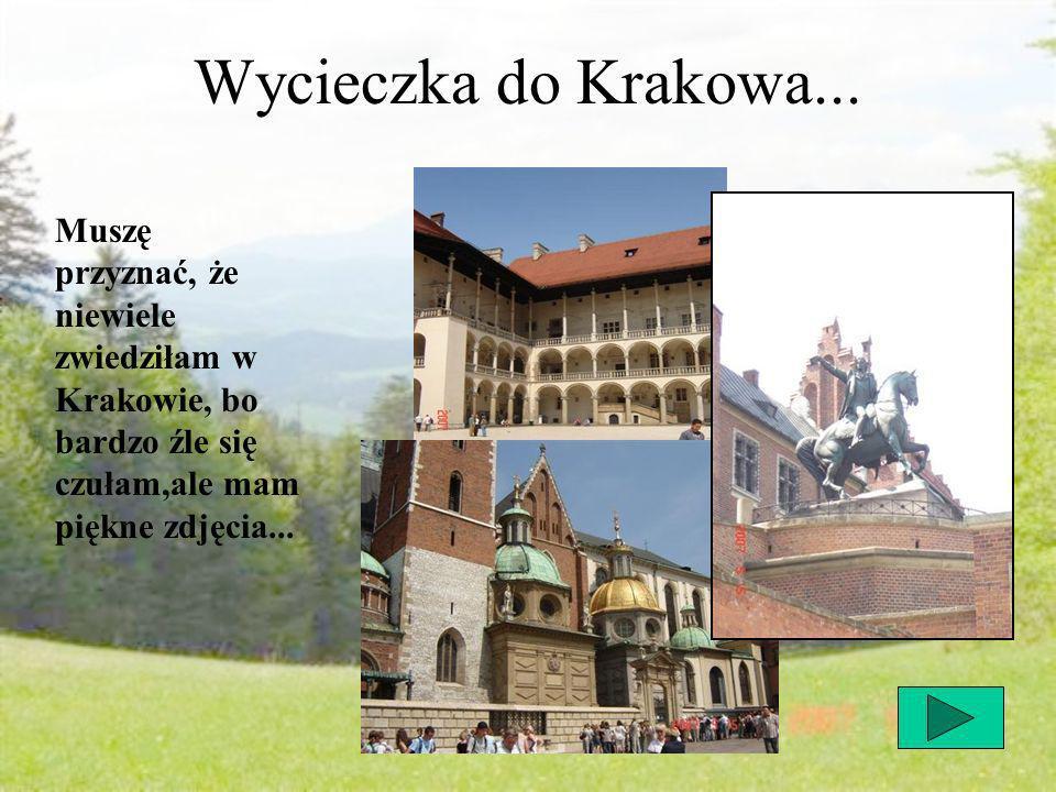 Wycieczka do Krakowa...