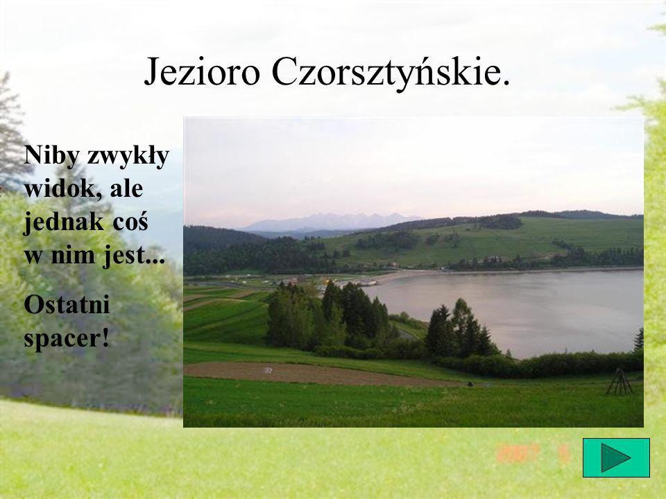 Jezioro Czorsztyńskie. Niby zwykły widok, ale jednak coś w nim jest... Ostatni spacer!