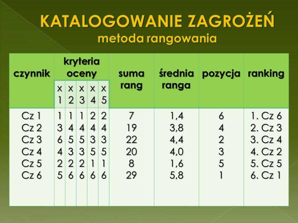 czynnik kryteria oceny suma rang średnia ranga pozycjaranking x1x1x1x1 x2x2x2x2 x3x3x3x3 x4x4x4x4 x5x5x5x5 Cz 1 Cz 2 Cz 3 Cz 4 Cz 5 Cz 6 1364251453261