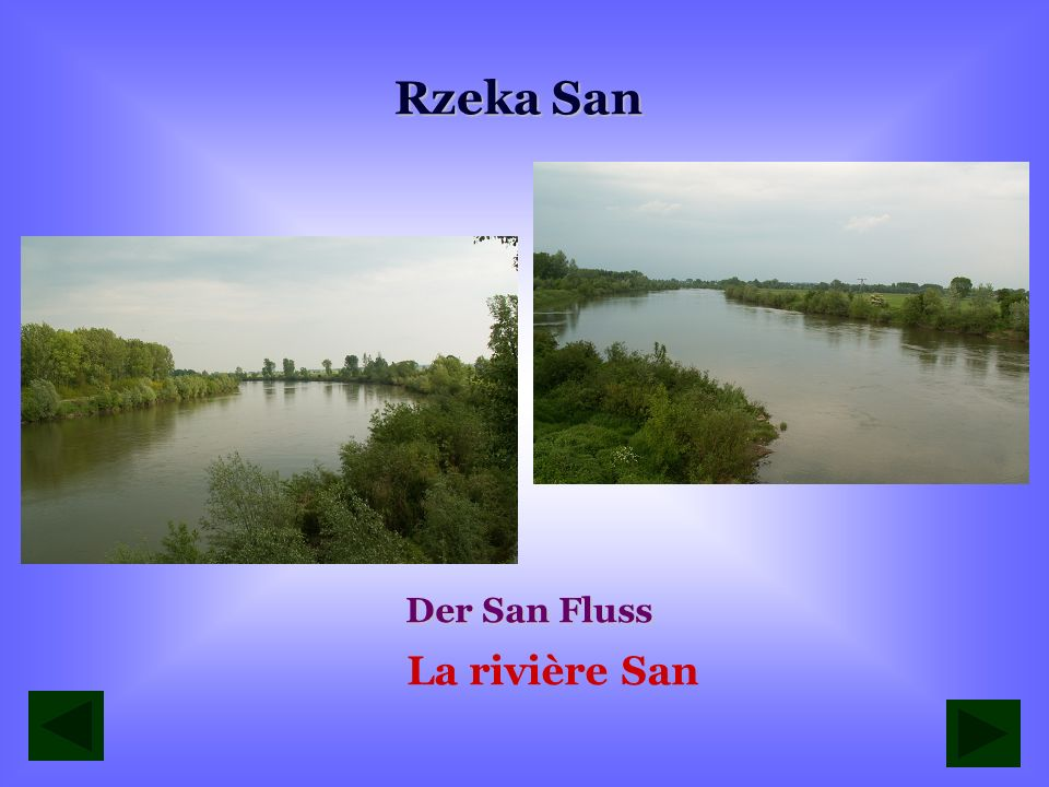 Rzeka Złota wpływająca do Sanu Der Fluss Złota der in den San Fluss einläuft Lembouchure de la rivière Złota dans San