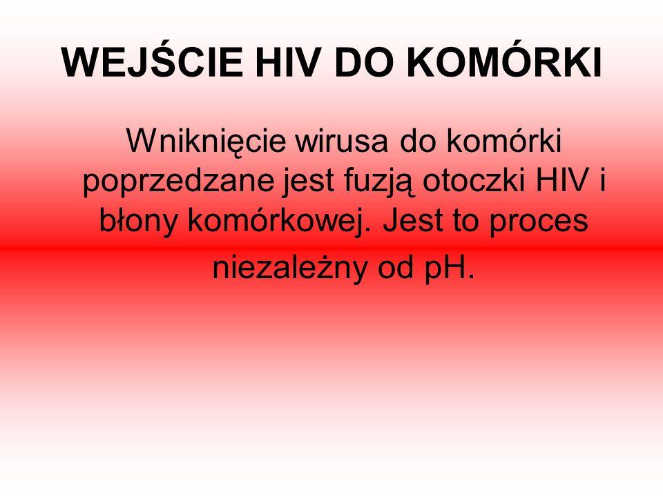 WEJŚCIE HIV DO KOMÓRKI Wniknięcie wirusa do komórki poprzedzane jest fuzją otoczki HIV i błony komórkowej. Jest to proces niezależny od pH.