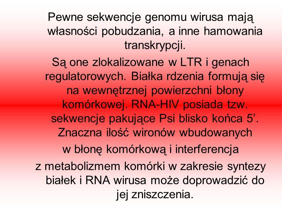 Pewne sekwencje genomu wirusa mają własności pobudzania, a inne hamowania transkrypcji. Są one zlokalizowane w LTR i genach regulatorowych. Białka rdz
