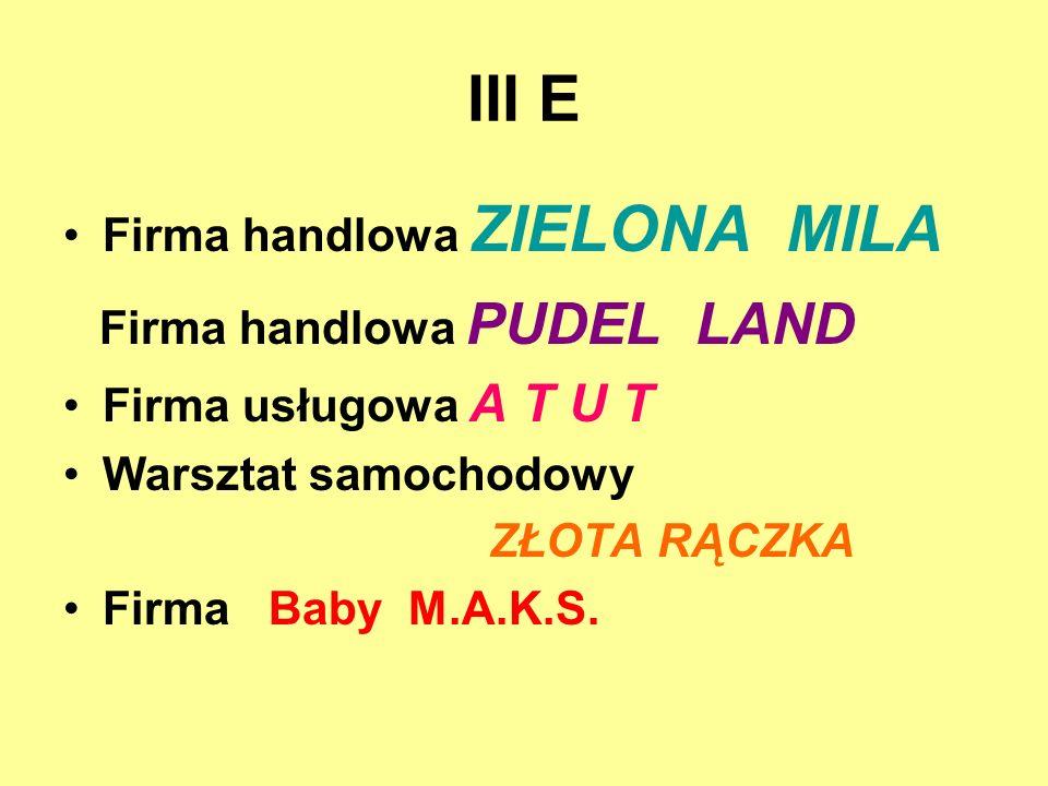 III E Firma handlowa ZIELONA MILA Firma handlowa PUDEL LAND Firma usługowa A T U T Warsztat samochodowy ZŁOTA RĄCZKA Firma Baby M.A.K.S.