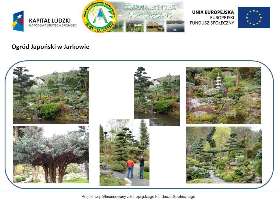 Projekt współfinansowany z Europejskiego Funduszu Społecznego Ogród Japoński w Jarkowie