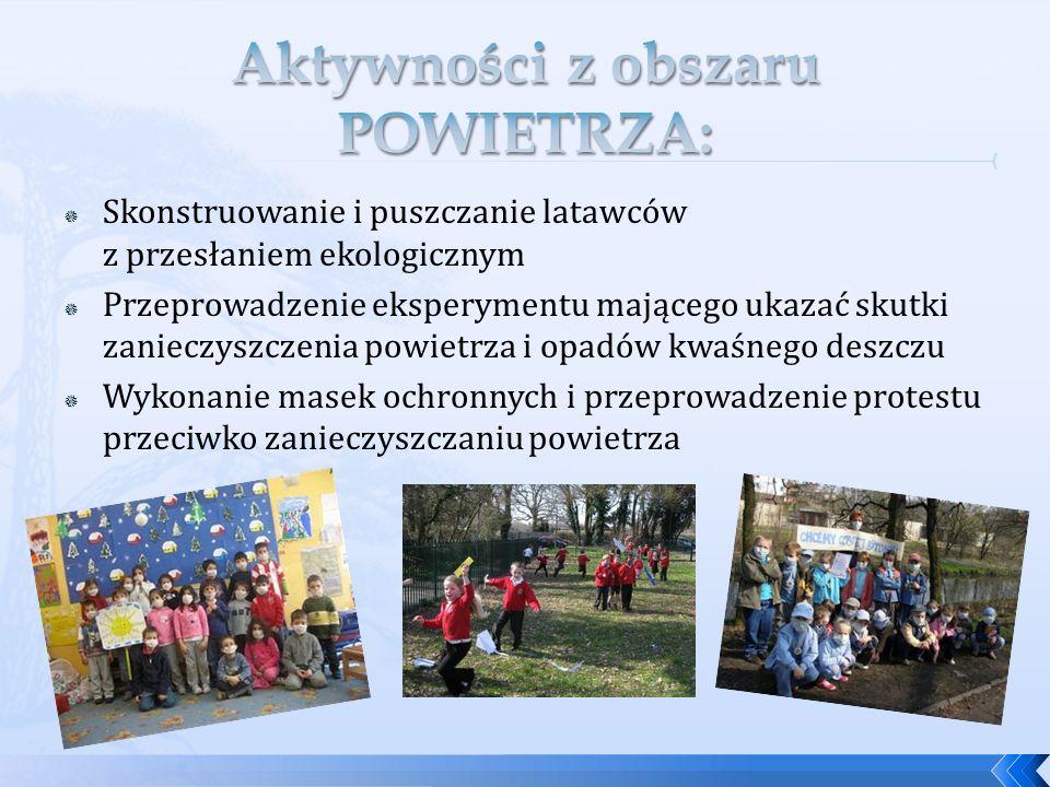 Zaplanowaniu działań międzyprzedmiotowych, zgodnie z podstawami programowymi krajów partnerskich Podkreślaniu w działaniach aktywnej współpracy i interakcji między dziećmi Wyniesieniu współpracy na poziom światowy, a jednocześnie dzięki otwarciu szkoły na społeczność lokalną