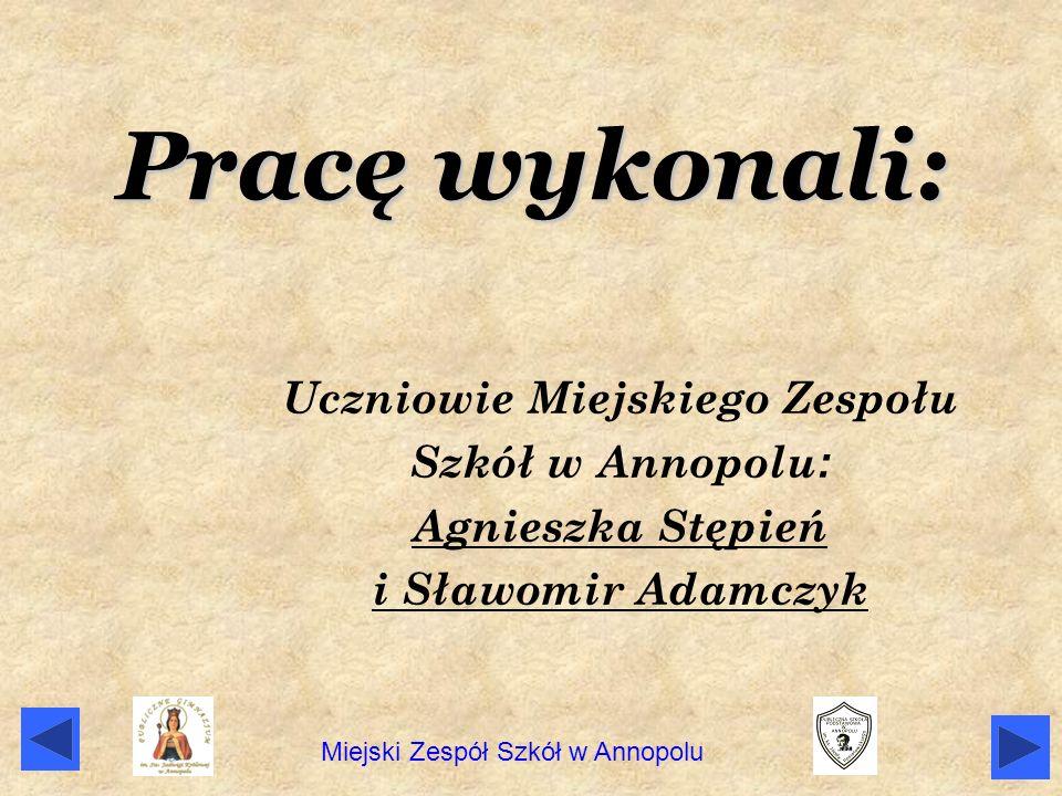 Pracę wykonali: Uczniowie Miejskiego Zespołu Szkół w Annopolu : Agnieszka Stępień i Sławomir Adamczyk