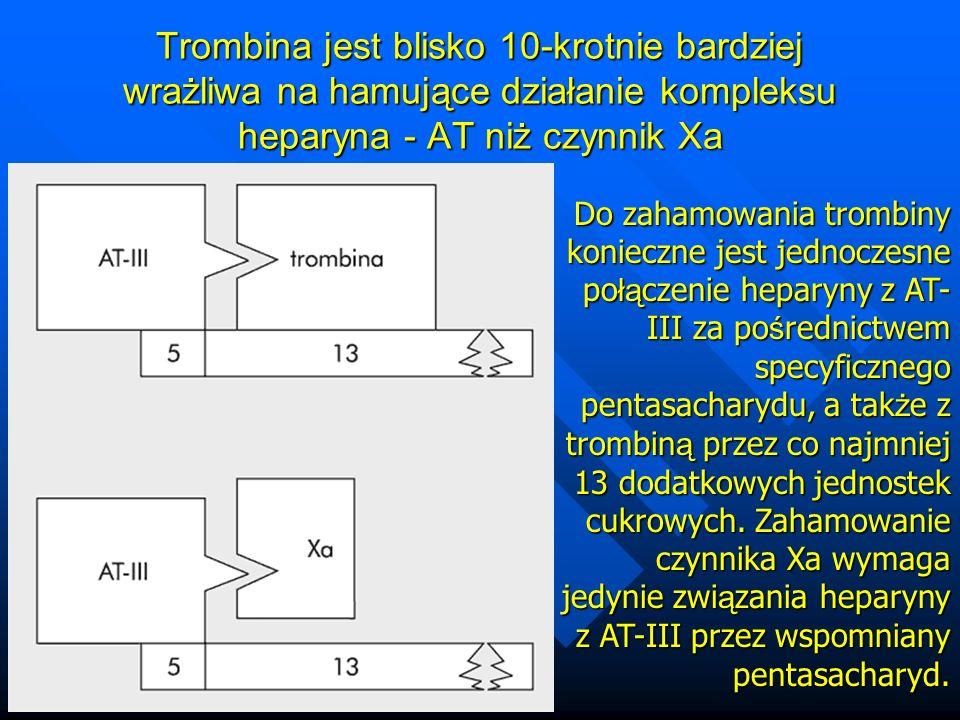 Trombina jest blisko 10-krotnie bardziej wrażliwa na hamujące działanie kompleksu heparyna - AT niż czynnik Xa Do zahamowania trombiny konieczne jest jednoczesne po łą czenie heparyny z AT- III za po ś rednictwem specyficznego pentasacharydu, a tak ż e z trombin ą przez co najmniej 13 dodatkowych jednostek cukrowych.