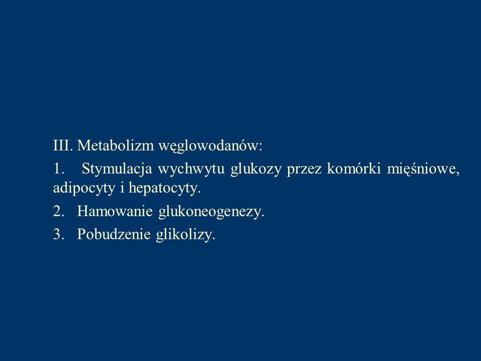 III. Metabolizm węglowodanów: 1. Stymulacja wychwytu glukozy przez komórki mięśniowe, adipocyty i hepatocyty. 2. Hamowanie glukoneogenezy. 3. Pobudzen