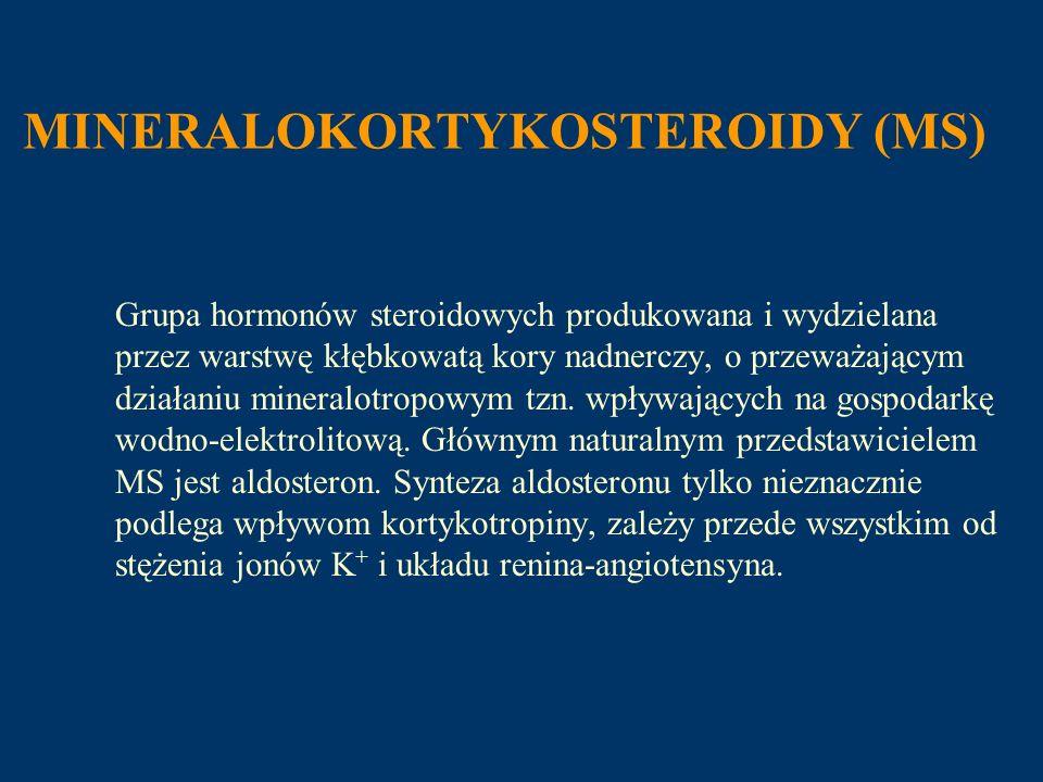 MINERALOKORTYKOSTEROIDY (MS) Grupa hormonów steroidowych produkowana i wydzielana przez warstwę kłębkowatą kory nadnerczy, o przeważającym działaniu m