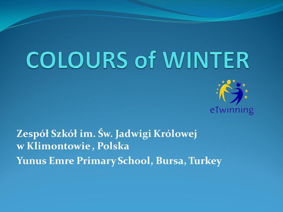 W projekcie wzięły udział dzieci ze szkoły podstawowej w Bursie, w Turcji oraz uczniowie z klas I – VI szkoły podstawowej w Zespole Szkół w Klimontowie.
