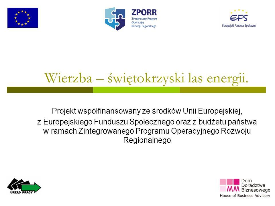 1 Wierzba – świętokrzyski las energii. Projekt współfinansowany ze środków Unii Europejskiej, z Europejskiego Funduszu Społecznego oraz z budżetu pańs