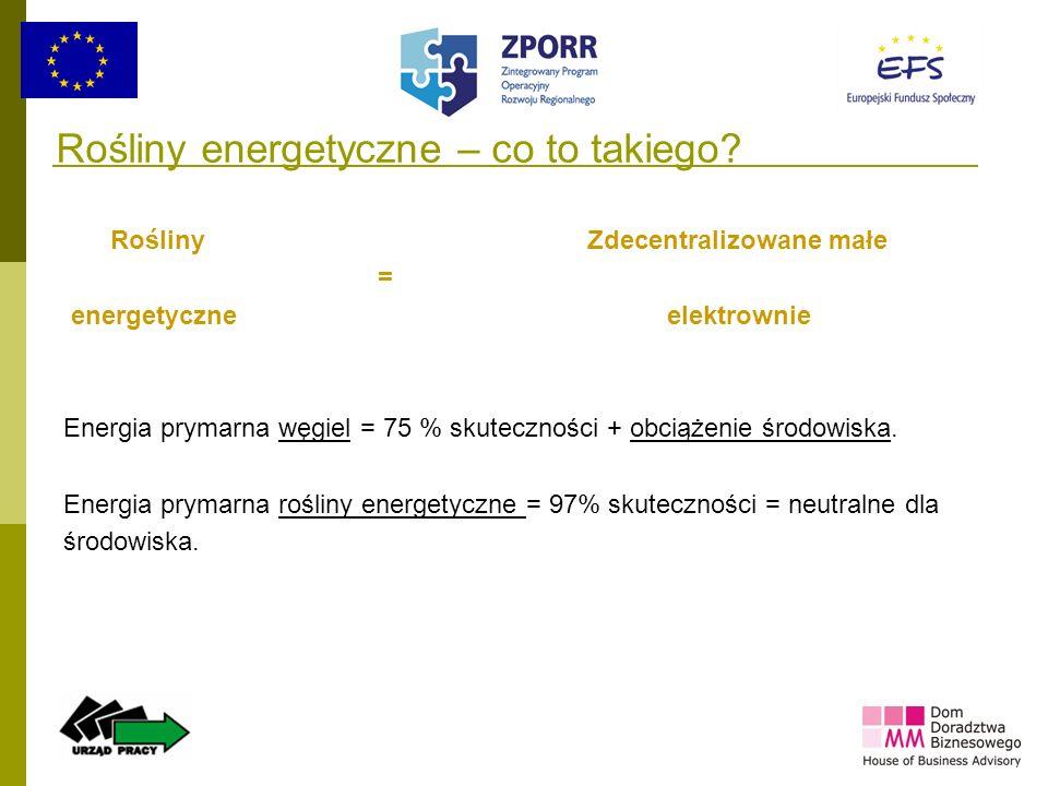15 Rośliny energetyczne – co to takiego? Rośliny Zdecentralizowane małe = energetyczne elektrownie Energia prymarna węgiel = 75 % skuteczności + obcią
