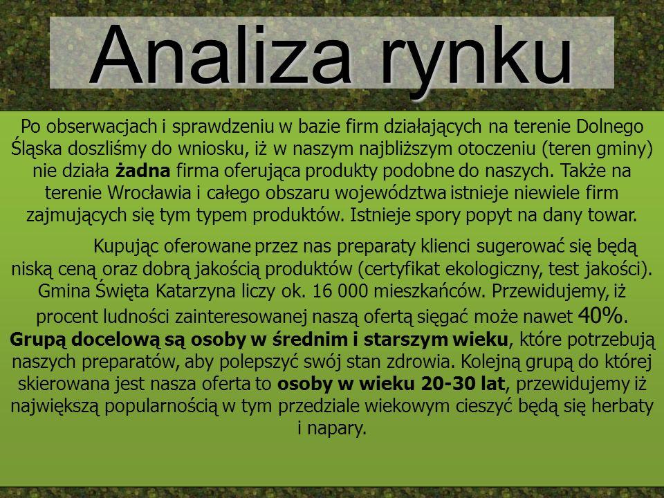 Analiza rynku Po obserwacjach i sprawdzeniu w bazie firm działających na terenie Dolnego Śląska doszliśmy do wniosku, iż w naszym najbliższym otoczeni