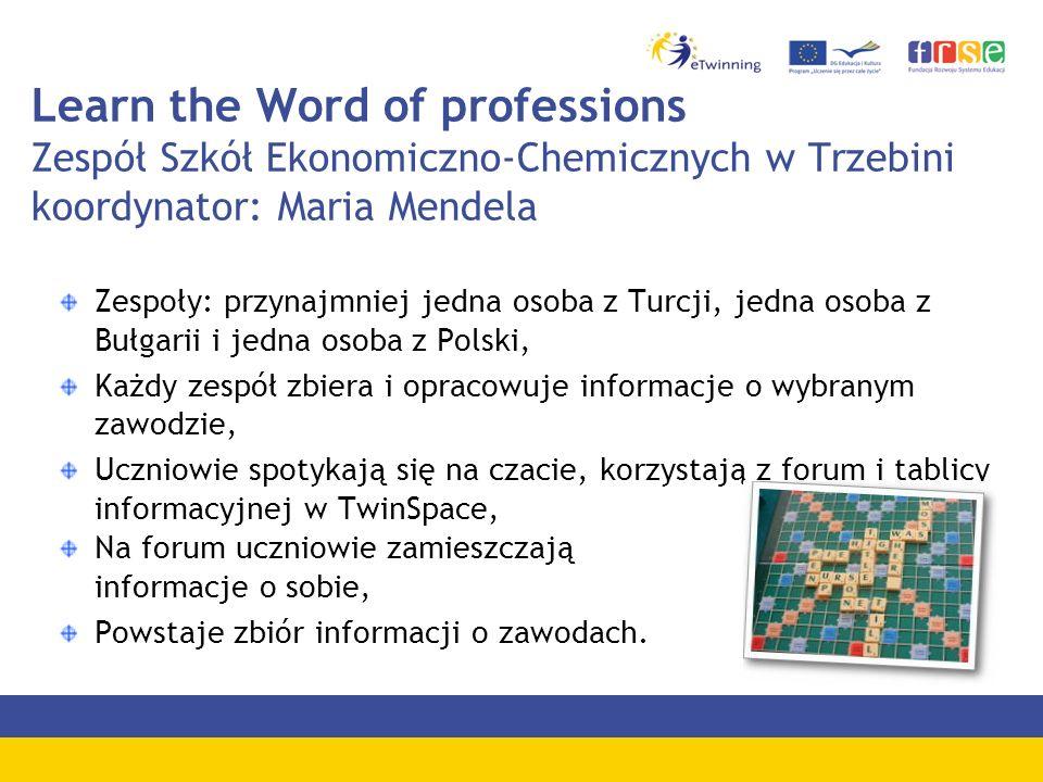 Learn the Word of professions Zespół Szkół Ekonomiczno-Chemicznych w Trzebini koordynator: Maria Mendela Zespoły: przynajmniej jedna osoba z Turcji, j
