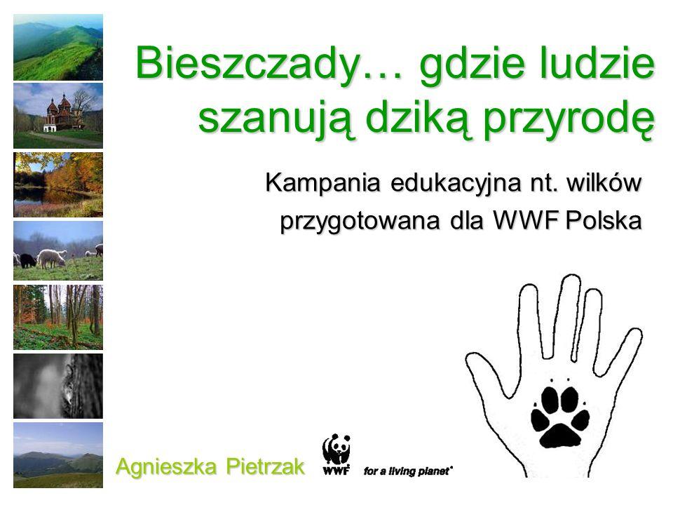 Bieszczady… gdzie ludzie szanują dziką przyrodę Kampania edukacyjna nt. wilków przygotowana dla WWF Polska Agnieszka Pietrzak
