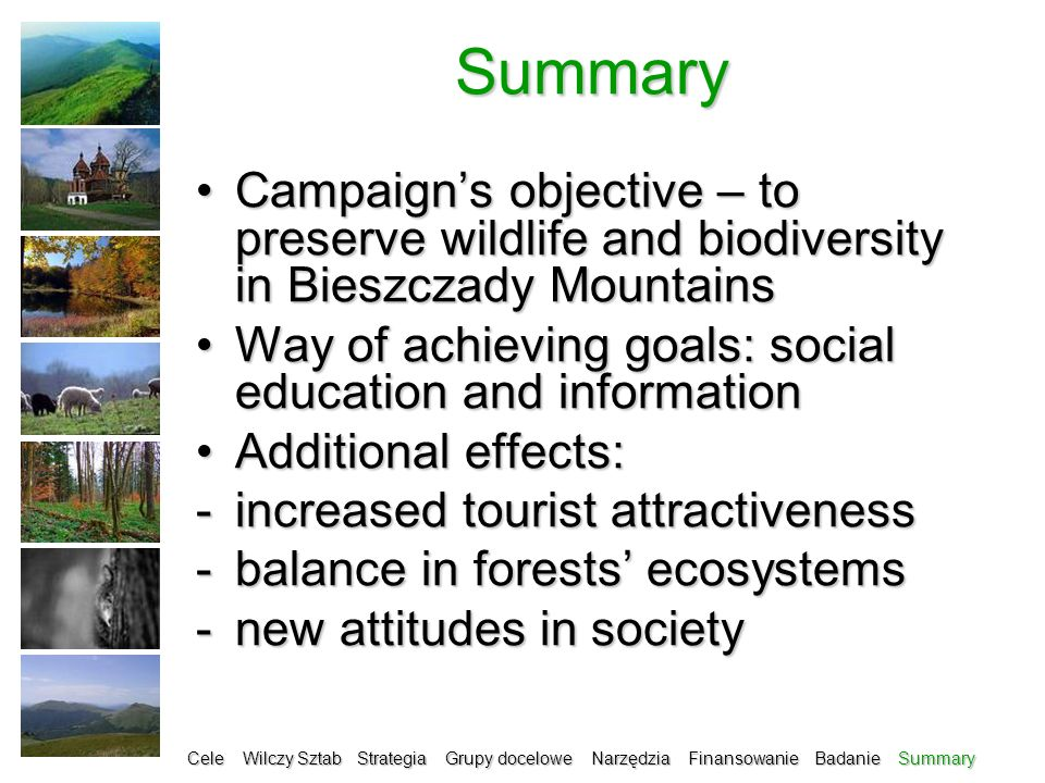 Summary Campaigns objective – to preserve wildlife and biodiversity in Bieszczady MountainsCampaigns objective – to preserve wildlife and biodiversity in Bieszczady Mountains Way of achieving goals: social education and informationWay of achieving goals: social education and information Additional effects:Additional effects: -increased tourist attractiveness -balance in forests ecosystems -new attitudes in society Cele Wilczy Sztab Strategia Grupy docelowe Narzędzia Finansowanie Badanie Summary