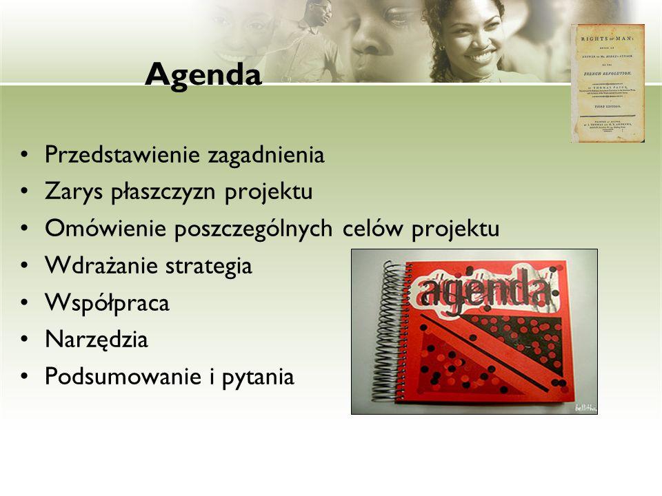 Agenda Przedstawienie zagadnienia Zarys płaszczyzn projektu Omówienie poszczególnych celów projektu Wdrażanie strategia Współpraca Narzędzia Podsumowa