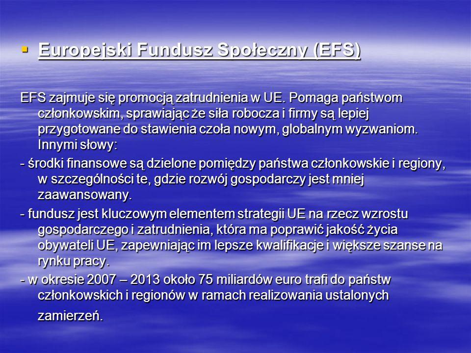 Europejski Fundusz Społeczny (EFS) Europejski Fundusz Społeczny (EFS) EFS zajmuje się promocją zatrudnienia w UE. Pomaga państwom członkowskim, sprawi