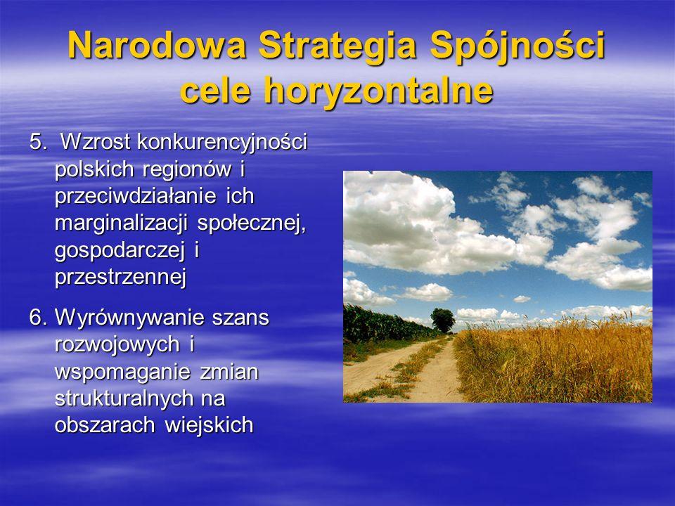 Narodowa Strategia Spójności cele horyzontalne 5. Wzrost konkurencyjności polskich regionów i przeciwdziałanie ich marginalizacji społecznej, gospodar