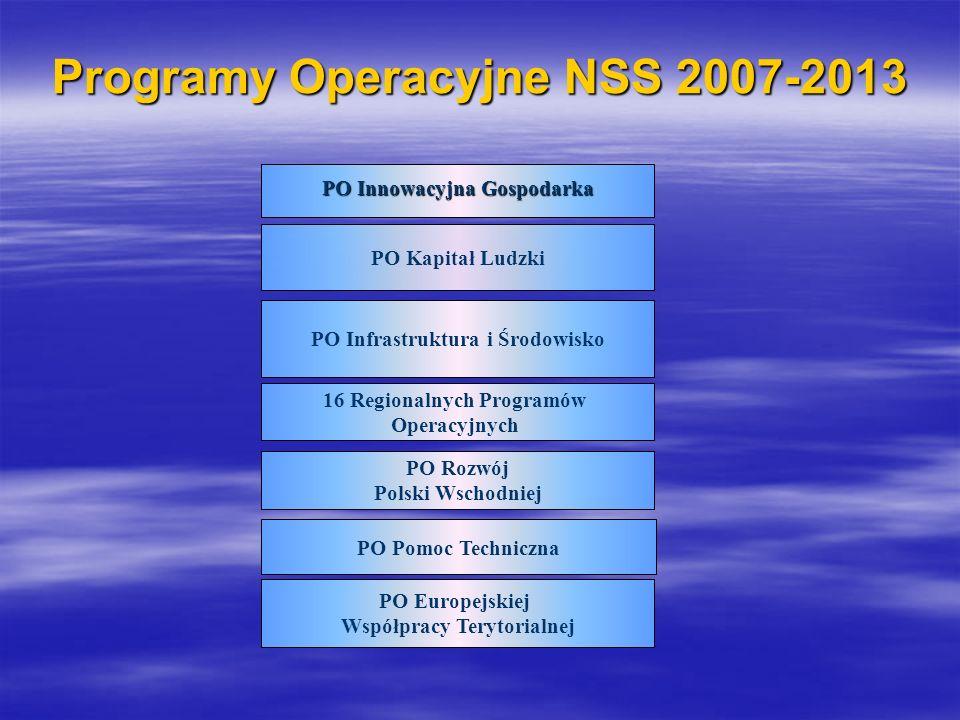 Programy Operacyjne NSS 2007-2013 PO Innowacyjna Gospodarka PO Kapitał Ludzki PO Infrastruktura i Środowisko 16 Regionalnych Programów Operacyjnych PO Rozwój Polski Wschodniej PO Pomoc Techniczna PO Europejskiej Współpracy Terytorialnej