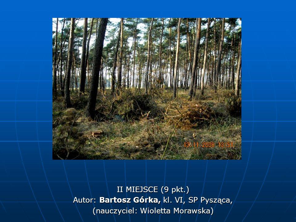 II MIEJSCE (9 pkt.) Autor: Bartosz Górka, kl. VI, SP Pysząca, (nauczyciel: Wioletta Morawska)