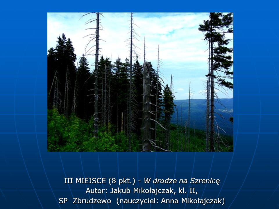 III MIEJSCE (8 pkt.) - W drodze na Szrenicę Autor: Jakub Mikołajczak, kl. II, SP Zbrudzewo (nauczyciel: Anna Mikołajczak)