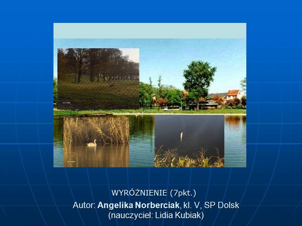 Autor: Angelika Norberciak, kl. V, SP Dolsk (nauczyciel: Lidia Kubiak) WYRÓŻNIENIE (7pkt.)