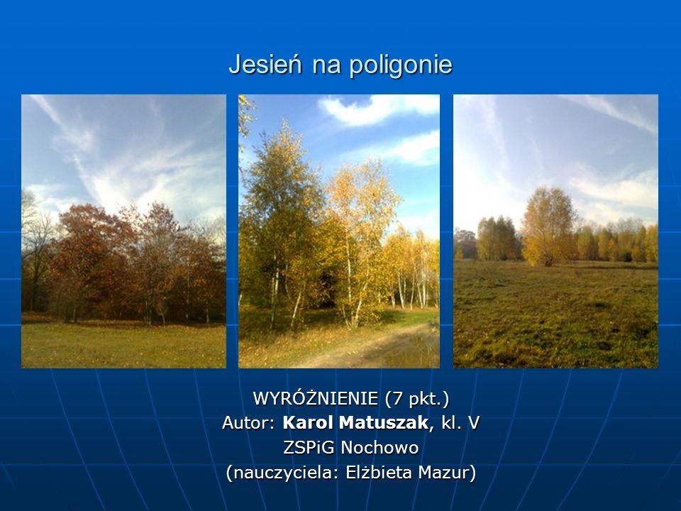 Jesień na poligonie WYRÓŻNIENIE (7 pkt.) Autor: Karol Matuszak, kl. V ZSPiG Nochowo (nauczyciela: Elżbieta Mazur)