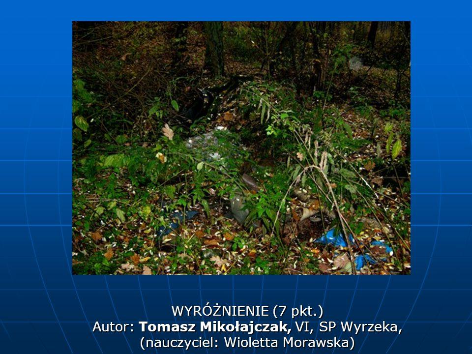 WYRÓŻNIENIE (7 pkt.) Autor: Tomasz Mikołajczak, VI, SP Wyrzeka, (nauczyciel: Wioletta Morawska)