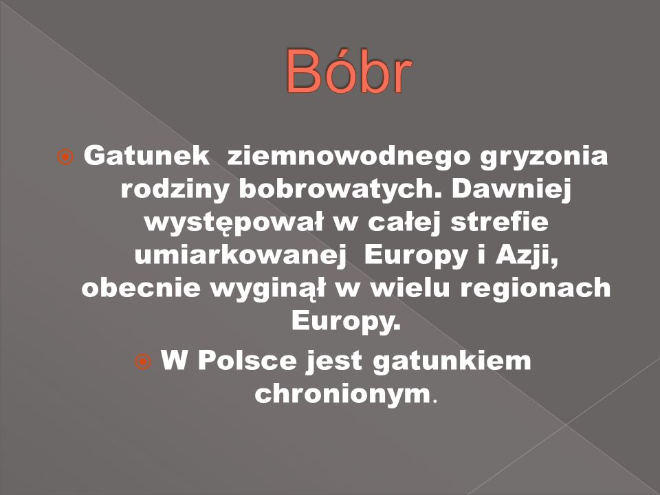 Gatunek ziemnowodnego gryzonia rodziny bobrowatych. Dawniej występował w całej strefie umiarkowanej Europy i Azji, obecnie wyginął w wielu regionach E