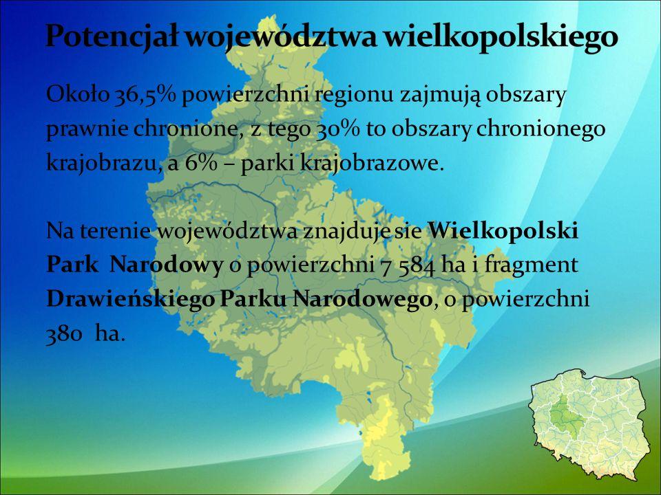 Około 36,5% powierzchni regionu zajmują obszary prawnie chronione, z tego 30% to obszary chronionego krajobrazu, a 6% – parki krajobrazowe.