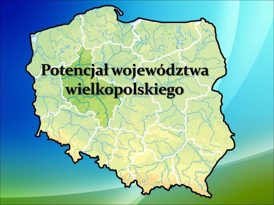 Inne ciekawostki i osobliwości przyrodnicze regionu to: - największy głaz narzutowy w Wielkopolsce: Kamień św.