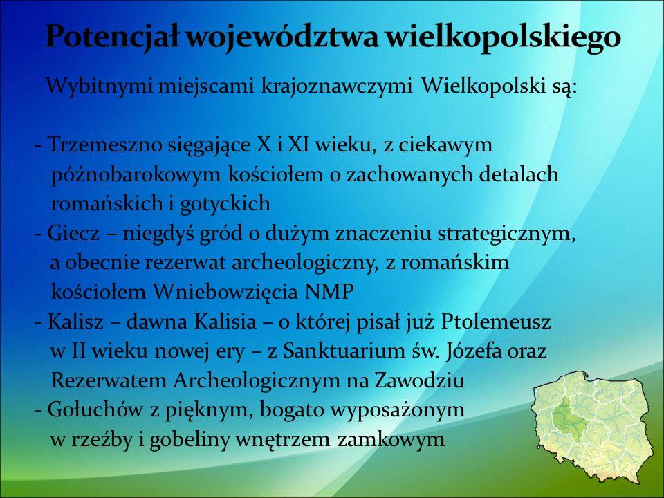 Wybitnymi miejscami krajoznawczymi Wielkopolski są: - Trzemeszno sięgające X i XI wieku, z ciekawym późnobarokowym kościołem o zachowanych detalach romańskich i gotyckich - Giecz – niegdyś gród o dużym znaczeniu strategicznym, a obecnie rezerwat archeologiczny, z romańskim kościołem Wniebowzięcia NMP - Kalisz – dawna Kalisia – o której pisał już Ptolemeusz w II wieku nowej ery – z Sanktuarium św.